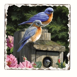 Bluebirds #2 Tumbled Tile Coaster Set of 4