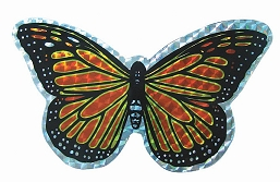 Orange Butterfly Screen Saver Magnet