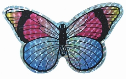 Multi-Colored Butterfly Screen Saver Magnet