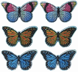 Small Butterfly Screen Saver Magnet Collection Set of 6