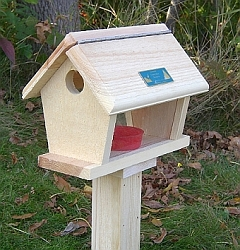 Conservation Small Bluebird Feeder