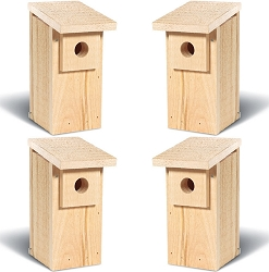 Conservation Economy Bluebird Trail Box Set of 4
