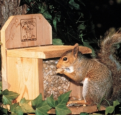 Chuck-A-Nut Squirrel Feeder with 1# of Feed
