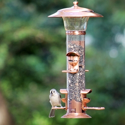 Select Radiant Seed Feeder