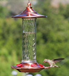 Glory Hummingbird Feeder