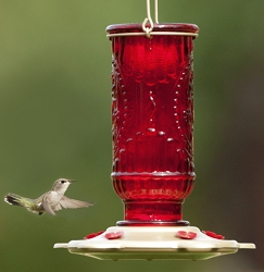 Hummingbird Red Vintage Feeder 20 oz.
