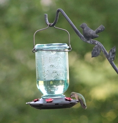 Mason Jar 25 oz. Hummingbird Feeder