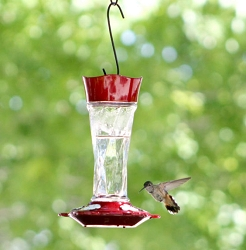 Twist Hummingbird Feeder 11 oz.