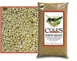Cole's White Millet Bird Seed 10#