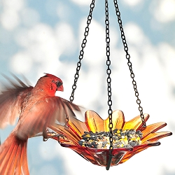 Daisy Hanging Glass Bird Feeder Orange 8