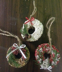 Donut Delight Birdseed Ornaments Winter Set of 6