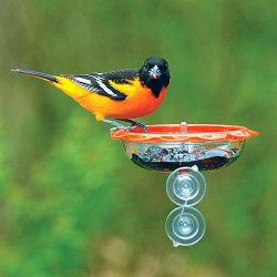 Droll Yankees BO's Marmalade Window Oriole Feeder Set of 2