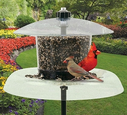 Droll Yankees Jagunda Squirrel-Proof Bird Feeder w/o Pole Auger