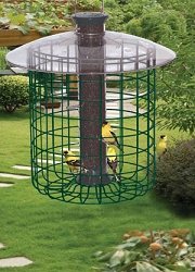 Droll Yankees Sunflower Domed Caged Feeder Green