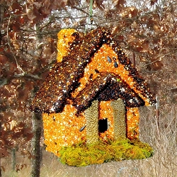 Orange and Black Cottage Edible Birdhouse