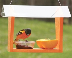 Green Solutions Recycled Plastic Oriole Feeder