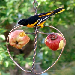 Johnny Apple Feeder
