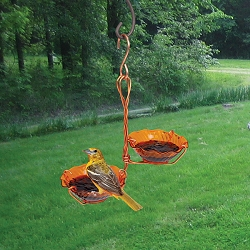 Copper Oriole Jelly Feeder Double Cup