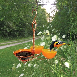 Copper Oriole Fruit and Jelly Feeder Single Cup