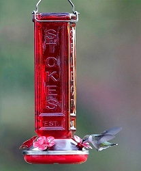 Collector's Square Hummingbird Feeder