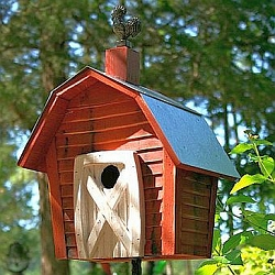 Rock City Bird House