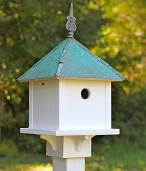 Skybox Bird House