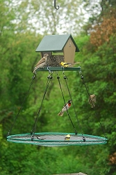 Seed Hoop Bird Seed Catcher