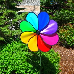 Rainbow Dazy Large Petal Spinner Set of 2