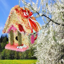 Love Shack Cottage Edible Birdhouse