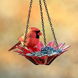 Daisy Hanging Glass Bird Feeder Red 8