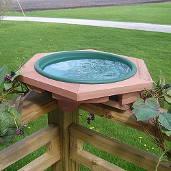 Classic Cedar Deck Mount Bird Bath Green