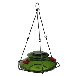 Modern Top Fill Hummingbird Feeder Green