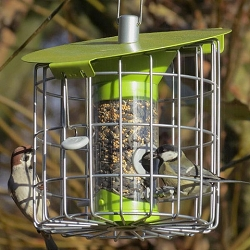Nuttery Roundhaus Compact Caged Seed Feeder