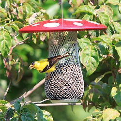 NO/NO Mushroom Mesh Bird Feeder Set of 2