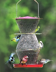 NO/NO Red & Brass 3 Tier Standard Bird Feeder