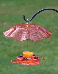 Translucent Oriolefest 12 oz. Oriole Feeder with Weather Guard