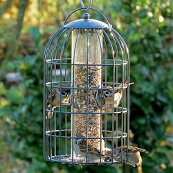 Nuttery Classic Extra Large Caged Seed Feeder