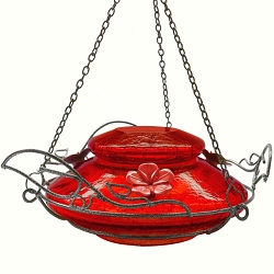 Modern Top Fill Hummingbird Feeder Red Crackle