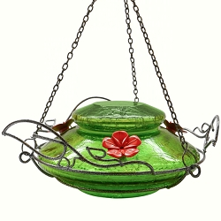 Modern Top Fill Hummingbird Feeder Green Crackle