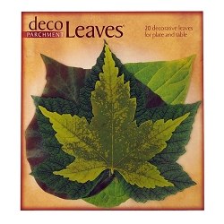 Spring Deco Parchment Leaves Set of 20