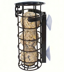 Window Suet Ball Feeder