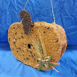 Pumpkin Edible Birdhouse