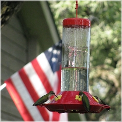 Best Hummingbird Feeder 30 oz.