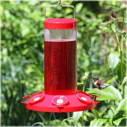 Grand Master Hummingbird Feeder 48 oz.