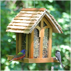 Birdscapes Mountain Chapel Bird Feeder