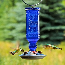 Elegant Antique Glass Bottle Hummingbird Feeder Cobalt Blue 16oz