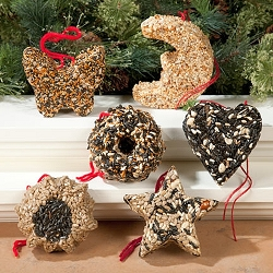 Assorted Garland Bird Seed Ornaments Set of 6