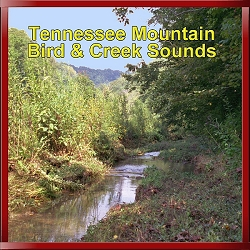 Tennessee Mountain Nature Sounds Birds & Creek CD