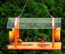 Rubicon Recycled Plastic Grand Slam Oriole Feeder