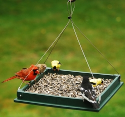 Recycled Plastic Small Hanging Platform Feeder Hunter Green
